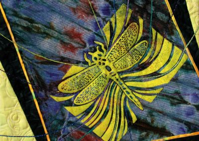 Dragonfly 2, 2017