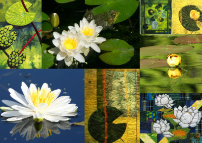 Waterlily Collage