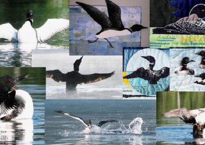 Loon Collage